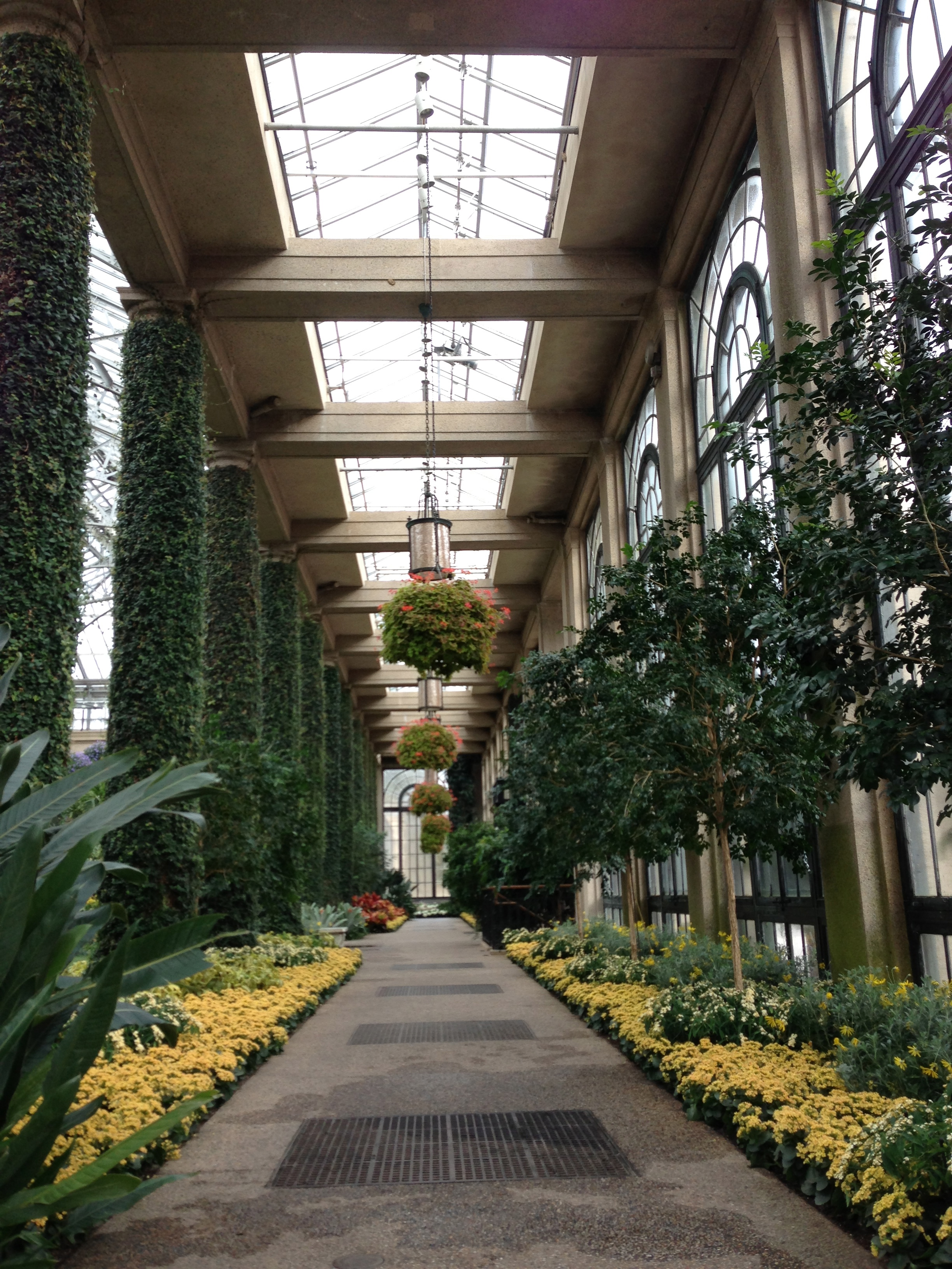Luminous clarity, sparkling nature...the conservatory at Longwood Gardens